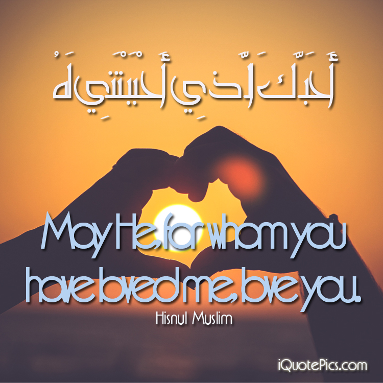 Islamic Quotes About Life Love And More 25 Top Islamic Blog