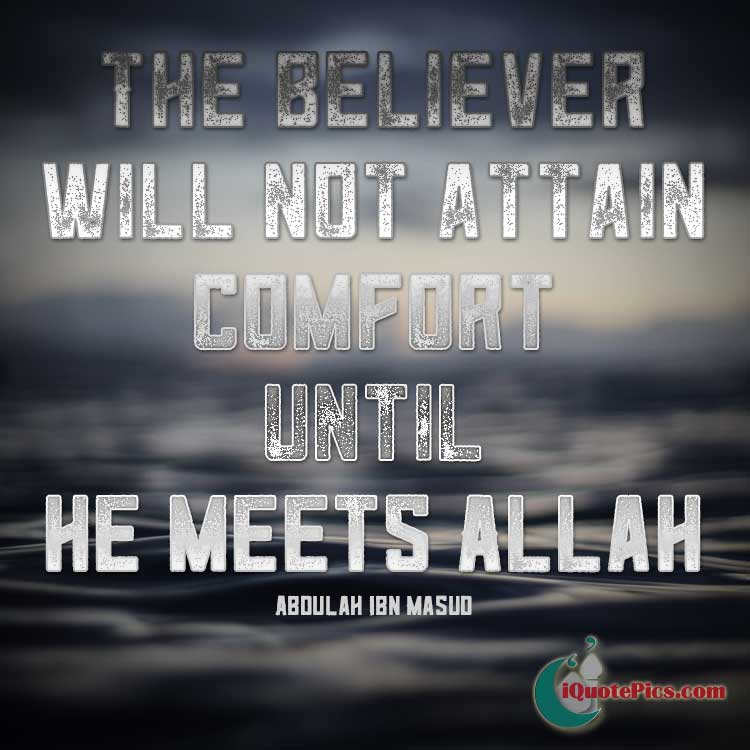 Picture with quote of The believer will not attain comfort until he meets Allah.
