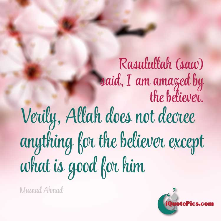Picture with quote of I am amazed by the believer. Verily, Allah does not decree anything for the believer except what is good for him.