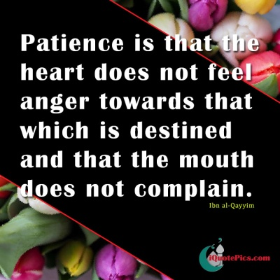 heart islamic quotes