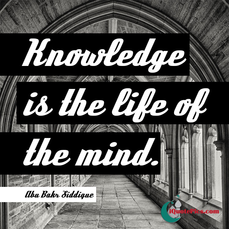 Picture with quote of Knowledge is the life of the mind.