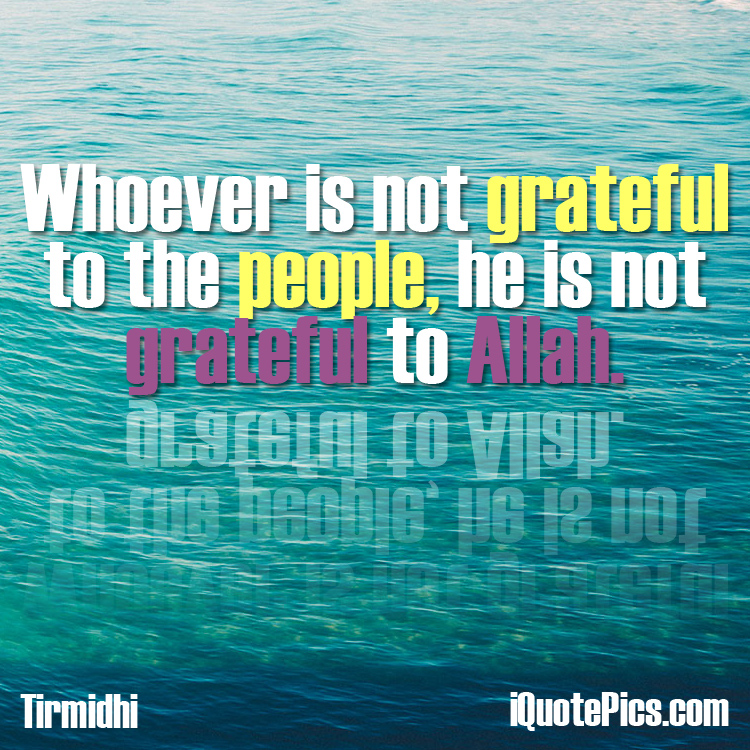 Picture with quote of Whoever is not grateful to the people, he is not grateful to Allah.