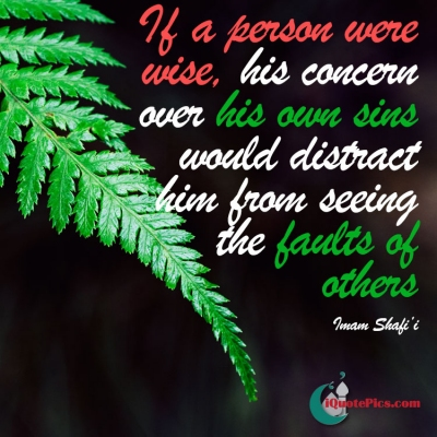 Picture with quote of If a person were wise, his concern over his own sins would distract him from seeing the faults of others.